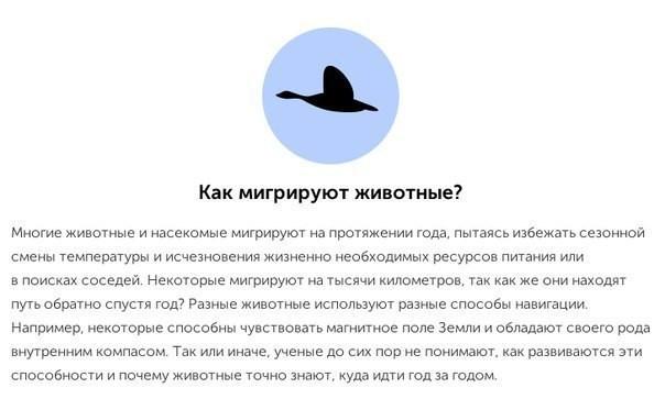 10-interesnyx-faktov-kotorye-uchenye-do-six-por-ne-mogut-obyasnit8