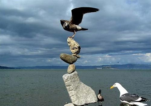 Человек - профессионал балансировки