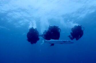 Внук Жака Кусто побил мировой рекорд своего деда, по пребыванию под водой