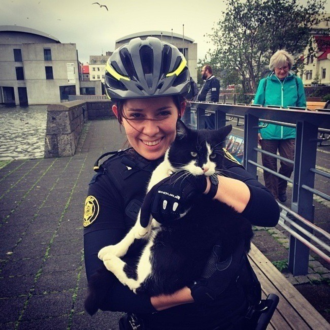 Исландия - одно из самых маленьких государств , где уровень преступности очень низкий, а полиция в инстаграм официально размещает свои фотки.