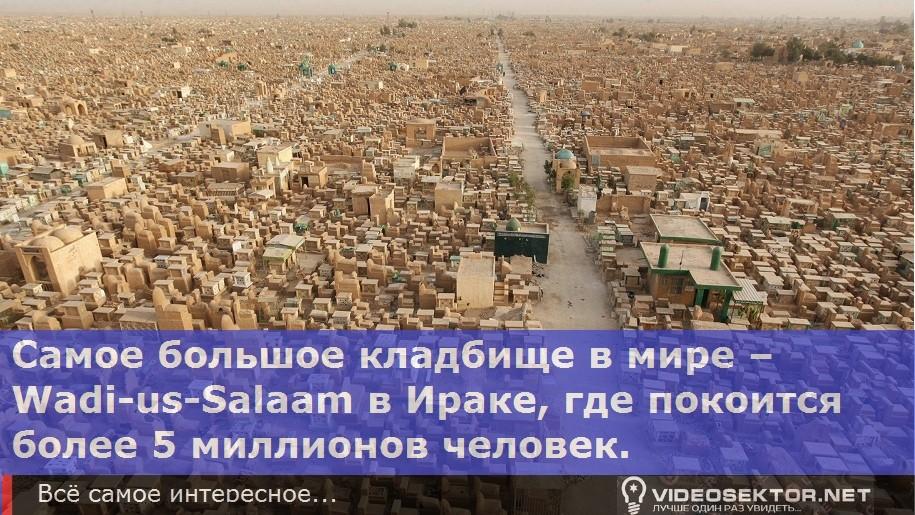 wadi-us-salaam-worlds_Fact_8