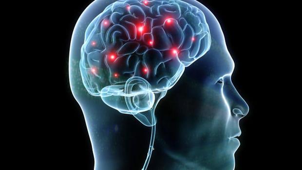 мозг к1